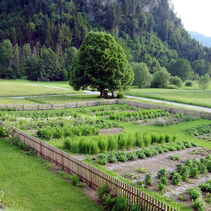 Klostergarten Gut Aich Kräuteranbau