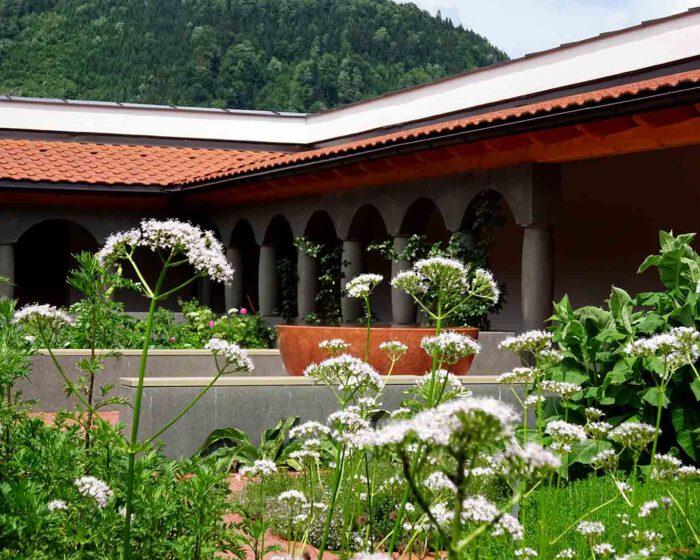 Prächtig gedeihen die Klassiker des klösterlichen Heilkräutergartens. Hier der Baldrian.
