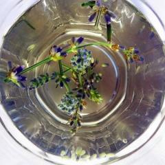 Lavendel ist der perfekte Stresskiller. Lavendelblütentee entspannt und schenkt positive Gedanken.