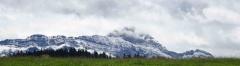 In den Bergen liegt schon Schnee, obwohl in den Tälern des Appenzeller Landes noch Sommer auf den Wiesen herrscht.