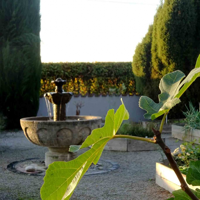 Im Zentrum des Hildegardgartens steht ein Brunnen nach dem klassischen Vorbild des Hortulus, dem klassischen Klostergarten.
