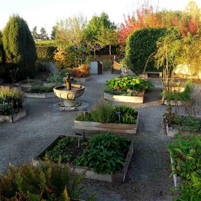 Nach dem Vorbild des klassischen Hortulus sind die Beete mit den Heilpflanzen rechteckig angelegt und mit Holzbohlen gefasst.