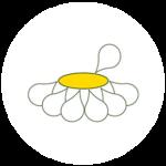 Logo: Wiesenwohl - das Beste aus den Kräutergärten