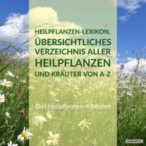 Banner Heilpflanzen Alphabet Wiesenwohl