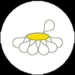 Auf Wiesenwohl.de findet man alles rund um das Thema Heilpflanzen und Heilkräuter.