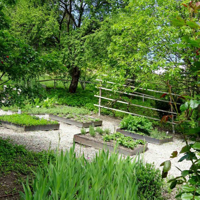 Die Beete wurden nach dem Vorbild des Gartenbaus nach Walahfrid Strabo angelegt.