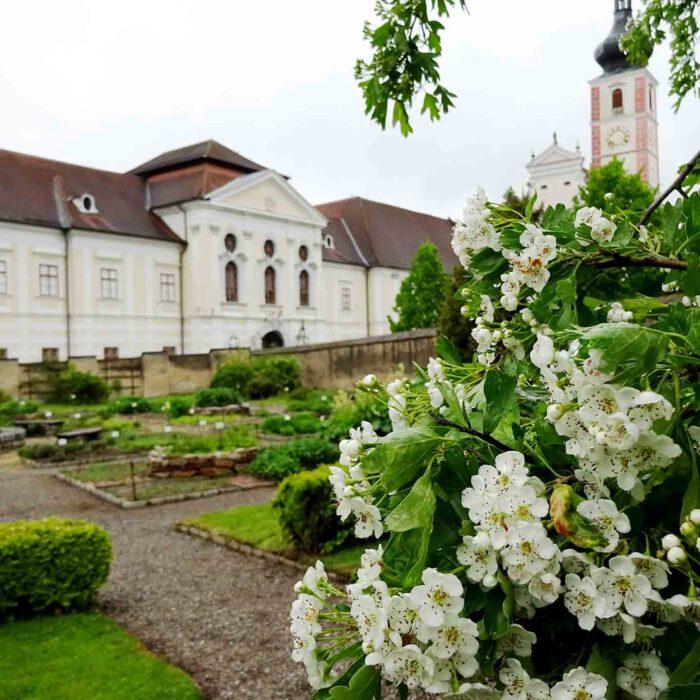 Auf den Spuren des Kräuterpfarrers Weidinger wandeln  oder Ruhe im Waldviertel finden, dazu lädt das Prämonstratenser-Stift Geras mit seinem bekannten Kräutergarten ein.