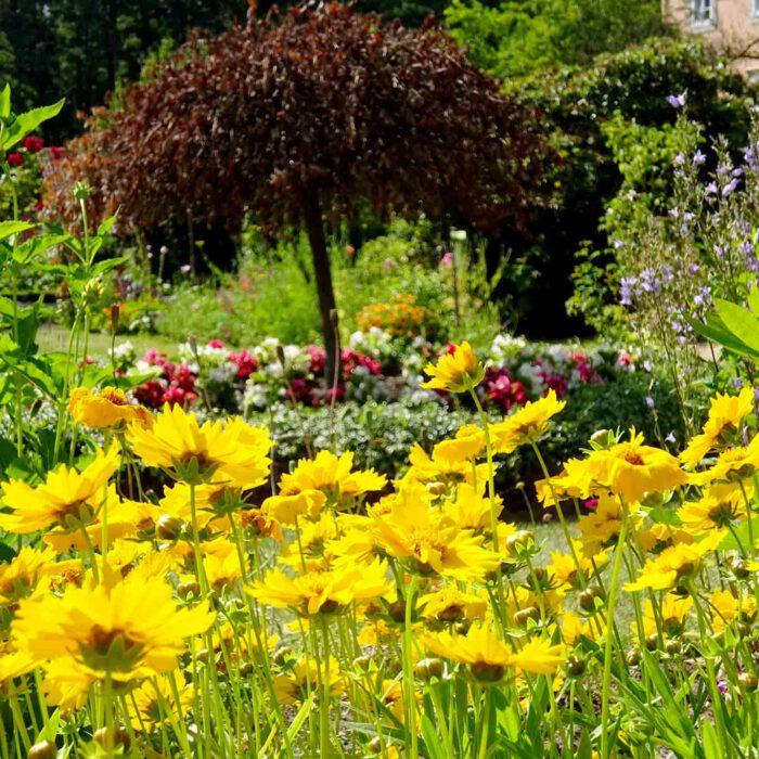 Die Natur treibt es wild, auch in Klostergärten.