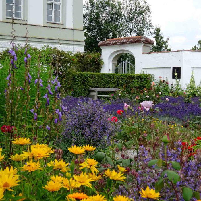Ein wilder Mix an Blumen und Kräutern, der gute Laune verschafft.