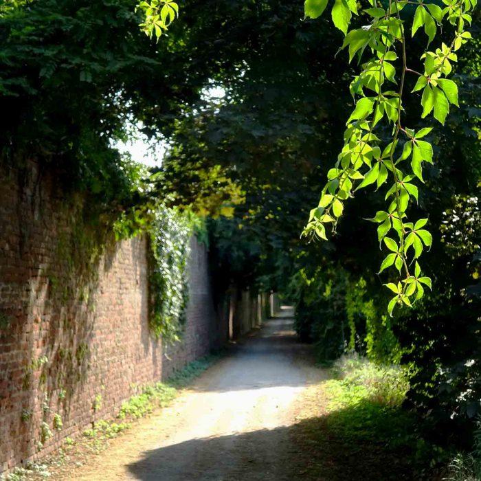 Über einen romantischen Fussweg gelangt man zur Certosa di Pavia.