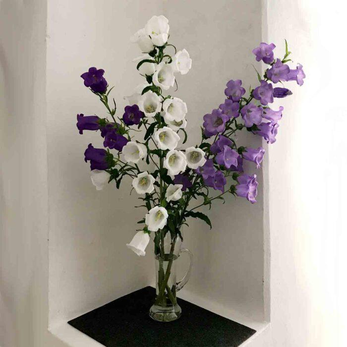 Auch der Weg zum Gottesdienst ist mit Blumen geschmückt.