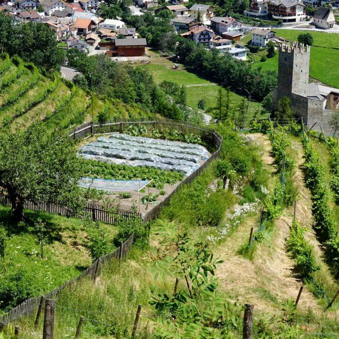 Obst- und Gemüsegärten sind terrassenförmig am Berg angelegt.