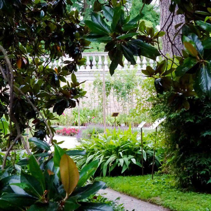 Die Anlage des botanischen Gartens der Universität Padua ist eine Komposition von Pflanzen, Bäumen und Sträuchern.