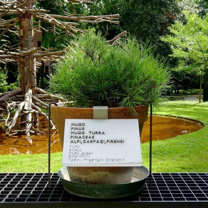 Die moderne Interpretation der alten Form, Pflanzen in Töpfen zu präsentieren.