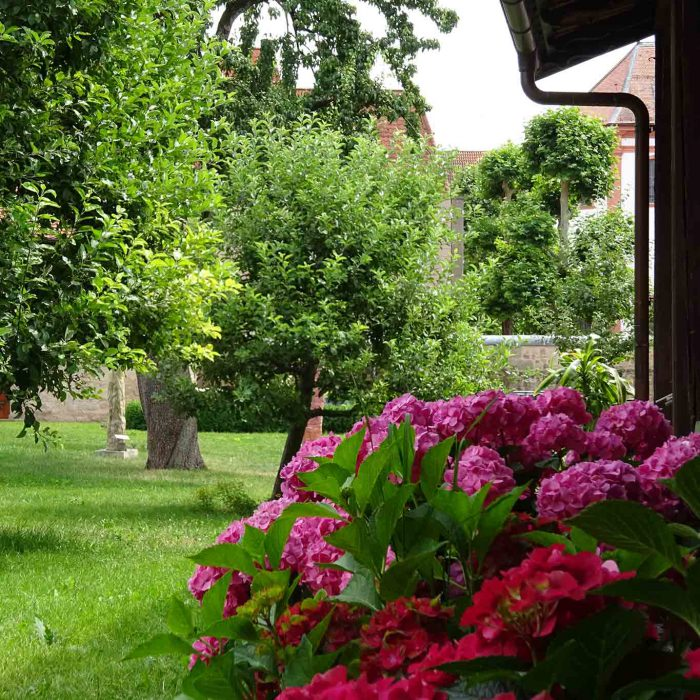 Der Garten ist zweigeteilt. In den Obstgarten und den Nutzgarten.