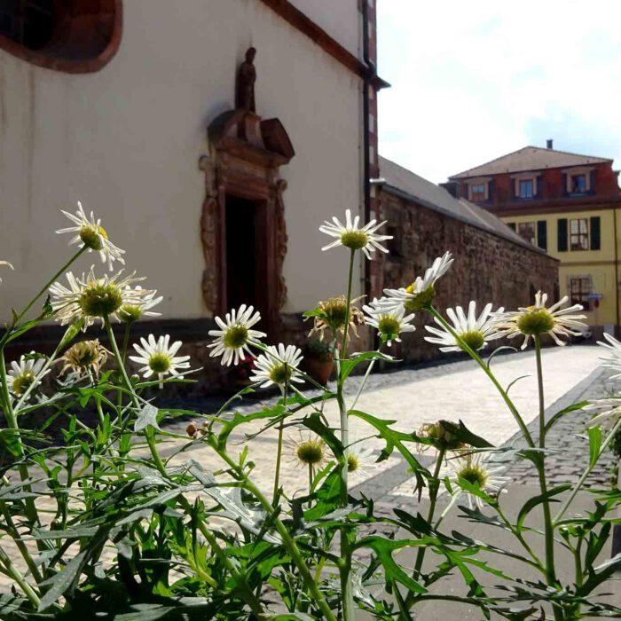 Die Pforte zum Fuldaer Kloster St Maria.