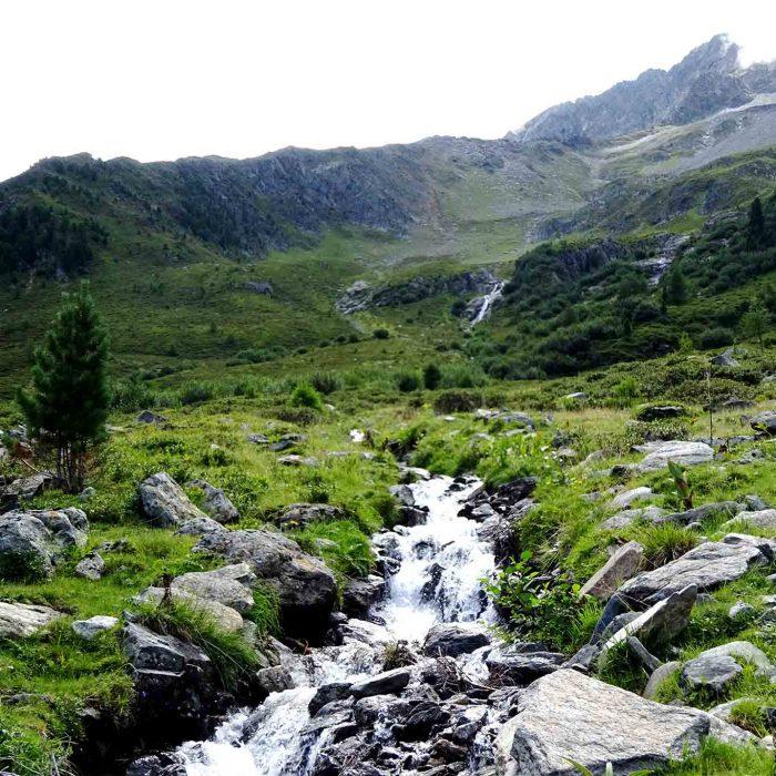 Klares Wasser des Stamser Baches strömt vom Berg hinab und besitzt Trinkwasserqualität.