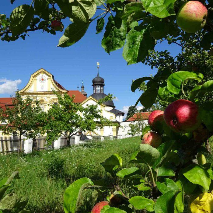 Von den zahlreichen Gärten der Zisterzienserabtei Stift Stams ist nur noch der Barockgarten erhalten. Kräuter findet man zahlreich in den Wäldern und auf den Almen ringsum.