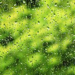 Wenn die Fenster vollregnen, der Wind um die Hausecke bläst, zeigt der Herbst bereits seine kalte Schulter.