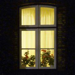 Heimelig warm leuchtet das Licht hinter den Gardinen an dem alten Haus am Elbstrand gelegen.