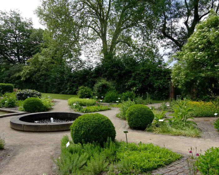 Parkähnliche Anlage des Heilpflanzengartens