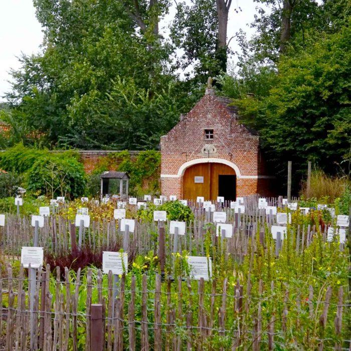 Ein Heilkräutergarten wie aus vergangenen Zeiten.