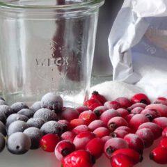 Hagebutten und Schlehen lassen sich mit wenig Aufwand zu süssen Köstlichkeiten verwandeln. Die Früchte benötigen vor dem Zubereiten eine Nacht lang Frost.