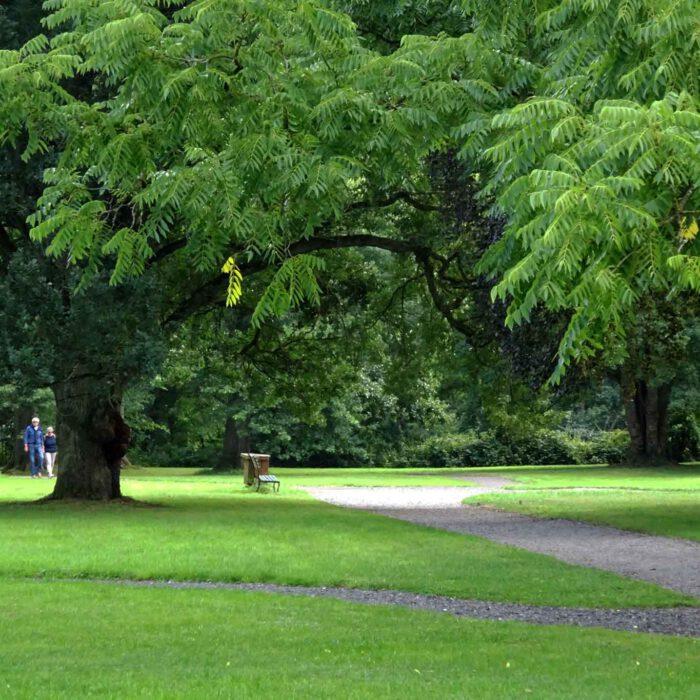 Im Park der Abbaye du Val Dieu
