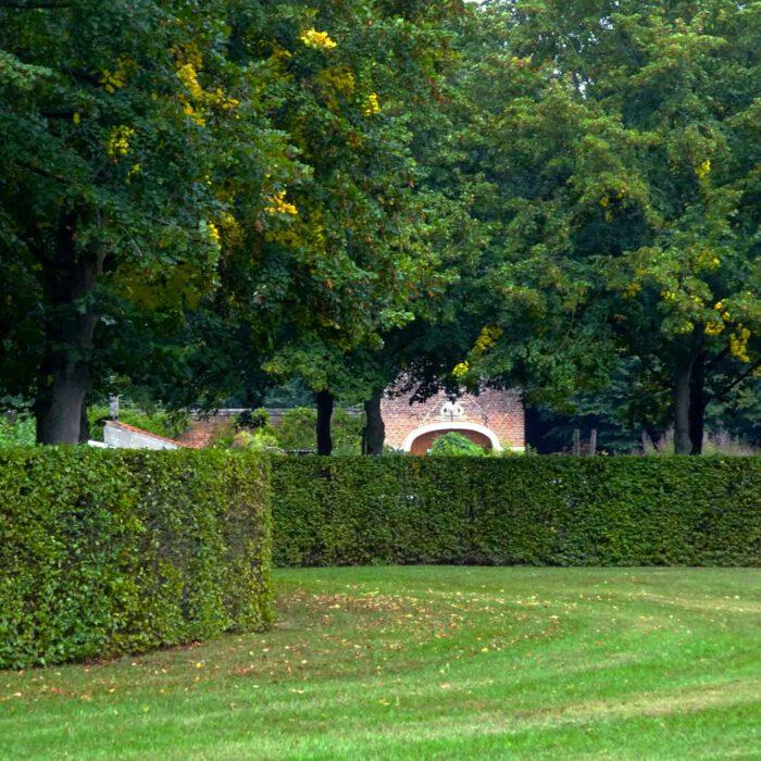 Ein Teil des Klosterparks ist der Heilpflanzengarten versteckt hinter hohen Hecken.