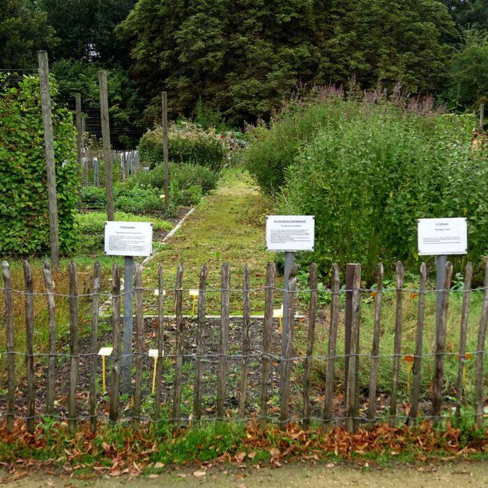 Grosse Schilder und Lattenzäune sind das Markenzeichen des Heilpflanzengartens der Abdji Postel.