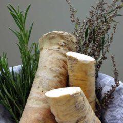 Im Kräutersammelkorb des Monats November befinden sich die Verdauungskräuter Meerrettich, Rosmarin und Beifuss.