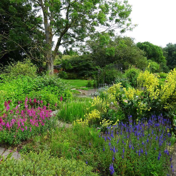 Thematisch gegliedert sind die Pflanzeninseln des Botanischen Gartens in Kiel. Wie es sich für eine Universität gehört.