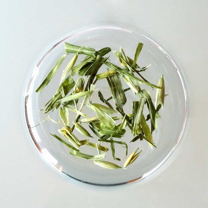 Grüner Hafer ist in vielen Rezepturen von Fasten- und Entschlackungstees zu finden. Er scheint auch eine günstige Wirkung auf die kognitiven Fähigkeiten zu besitzen.