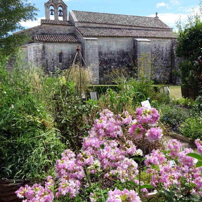 Rosen sind ein begehrter Schmuck von Klostergärten wie hier im Mittelaltergarten der Jardins de Salagon.